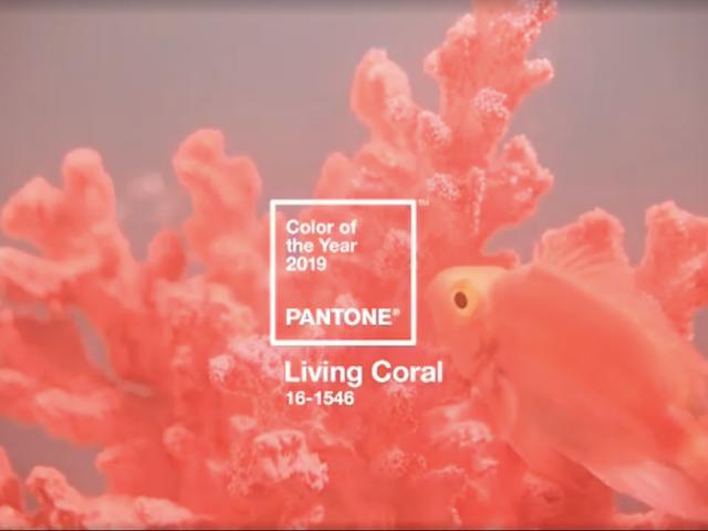 สีสันแห่งปีของ Pantone เป็นเรื่องเกี่ยวกับ Vibes ที่ดีและการออมแนวปะการัง