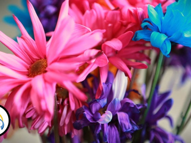 Make Fresh Flowers Last Longer With These Six Steps