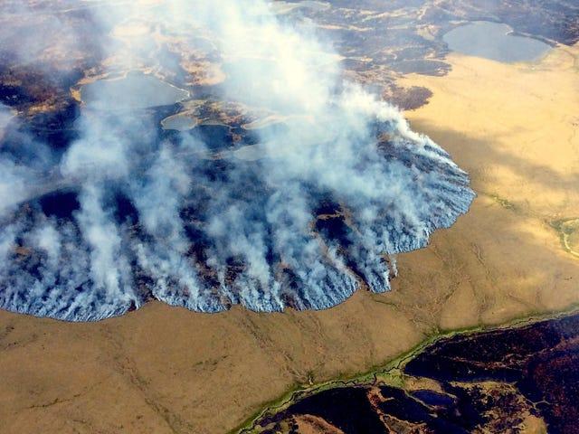 Les compressions budgétaires proposées par le gouverneur de l'Alaska seraient un désastre pour la recherche climatique américaine