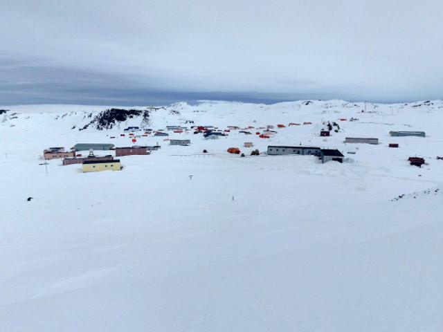 El badador de la rada en la Antártida a su compañero porque le contaba el fin de los libros que estaba leyendo