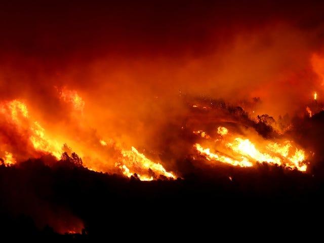 Kebakaran Kincade Meletup di Negara Wain Di mana Blackout Dijadualkan