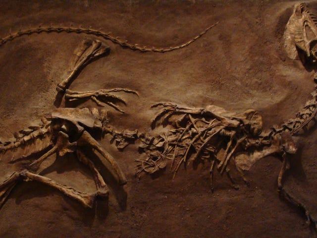 Αυτό είναι το πιο Beat Up Dinosaur που ανακαλύφθηκε ποτέ