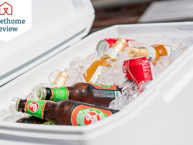 Here Are the Best Coolers For Summertime Chilling