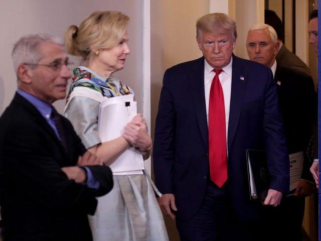 Trump-administrationen ser efter at genåbne Amerika næste måned, fordi de alle er idioter