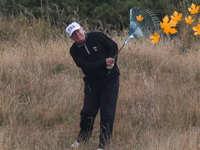 Finns Mock President Trump by Posting 'Forest Raking' Photos Online