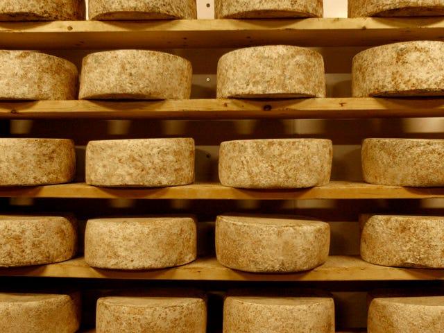 Is Raw Milk Cheese Dangerous?