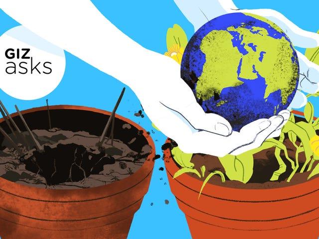 Hvordan kan vi stoppe naturens sammenbrud?