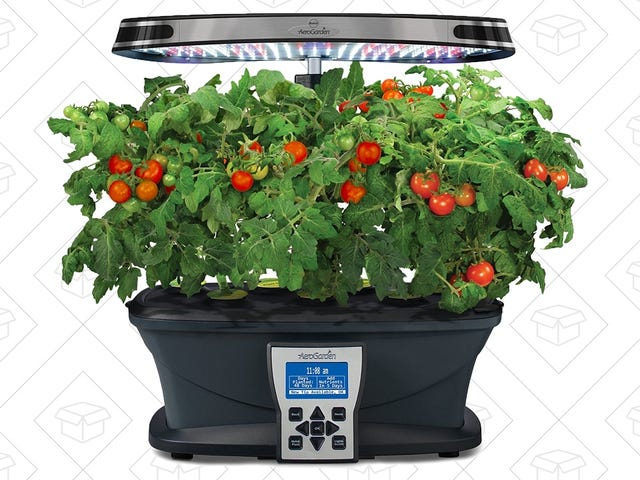You Don't Need a Green Thumb to Operate This AeroGarden, Now Cheaper Than Ever