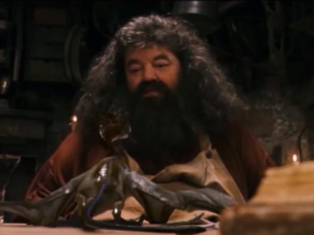 Eddie Redmayne dice que le gustaría ver a Hagrid en alguna de las películas deAnimales fantásticos
