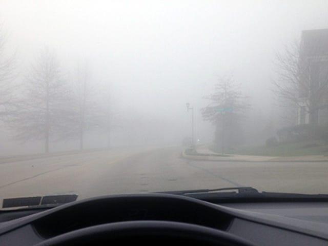 A Bit Foggy Today