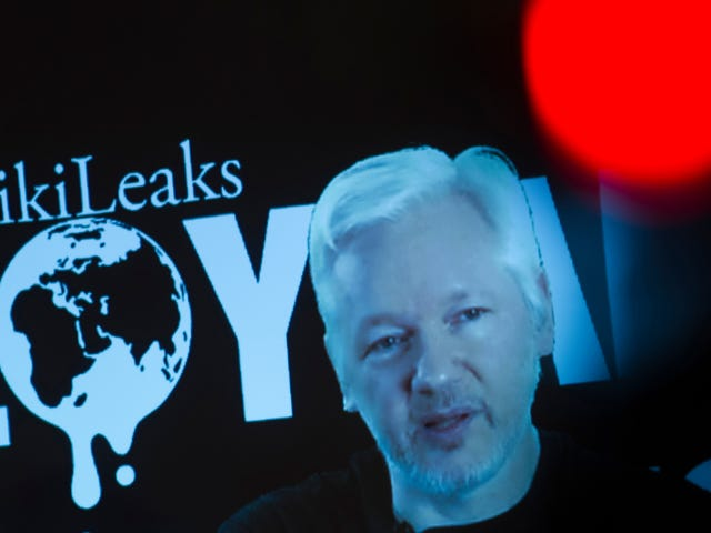 Julian Assange Swears He Didn't Want to Influence the Election