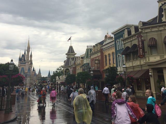A Newcomer's Take On Disney World