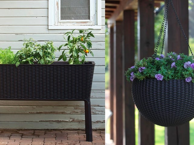 Save Some Green On These Planters From Amazon