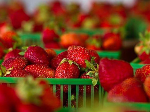 El revestimiento de seda súper fino mantiene la fruta fresca durante más de una semana