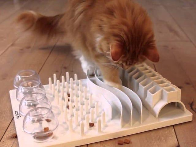 """Descubren que les gatos se mantienen más sanos cuando les obligas a """"cazar"""" su comida"""