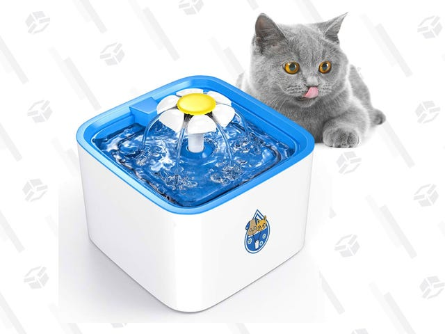 Appeal To Your Cat Leaders With This $15 Pet Water Fountain