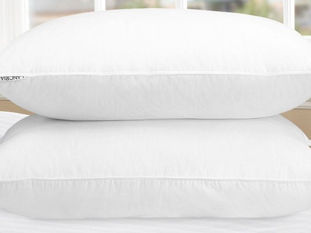 Легкий отдых с 2-мя подушками для 22 долларов