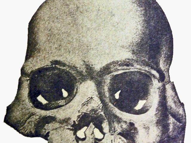 Il curioso caso del cranio di Calaveras