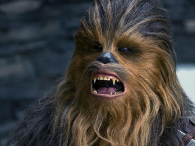 Cette vidéo a déjà été vérifiée si vous êtes intéressé par le comportement: Vous souhaitez en savoir plus sur les personnages de Star Wars ?