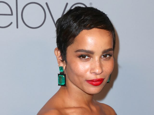 Zoë Kravitz Says She Worked With a Director Whose Behavior Was 'Totally Inappropriate'