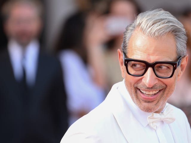 A Charity Shop Filled All of Its Frames With Pictures of Zaddy Jeff Goldblum