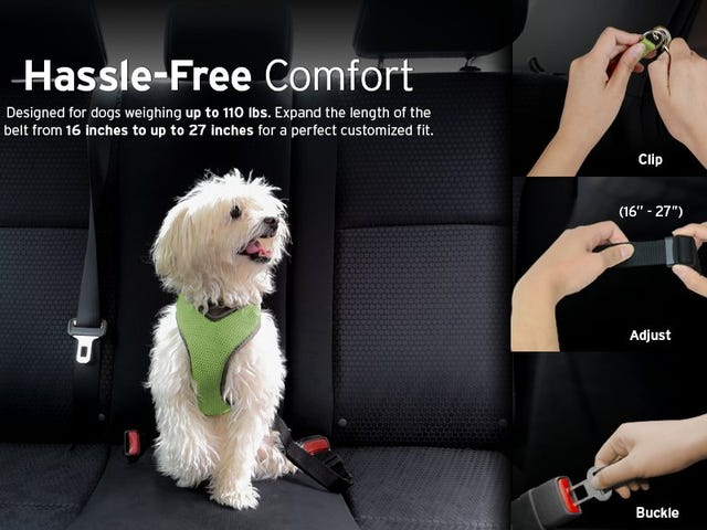 "<a href=""https://kinjadeals.theinventory.com/keep-your-pets-in-the-backseat-with-these-affordable-se-1793368111"" data-id="""" onClick=""window.ga('send', 'event', 'Permalink page click', 'Permalink page click - post header', 'standard');"">Keep Your Pets In the Backseat With These Affordable Seat Belts</a>"