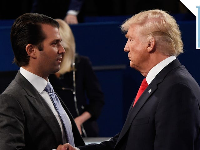 Donald Trump Jr. è molto bravo