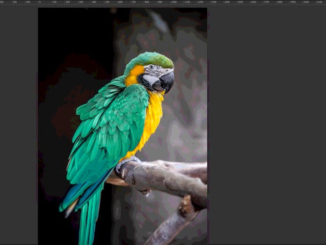 10 trucchi di Photoshop per correggere le peggiori foto