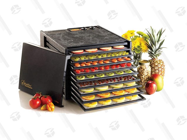 Use This Dehydrator to Keep Food From Spoiling, Now Under $200