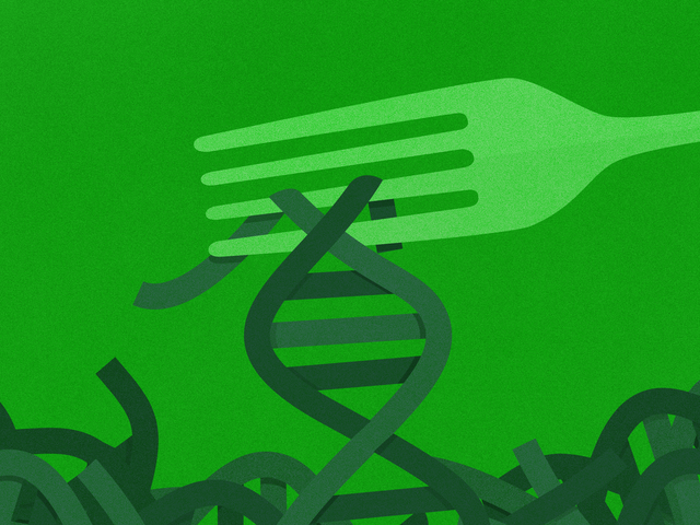 ¿Puede una prueba de ADN realmente ayudarlo a perder peso?