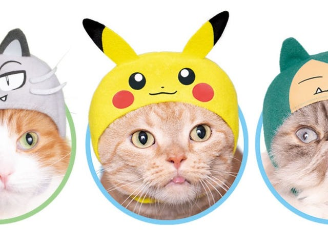 Pokémon Cosplay Has Gotten Easier For Cats