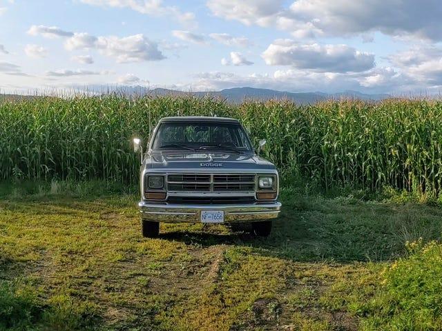 Fotos de caminhão