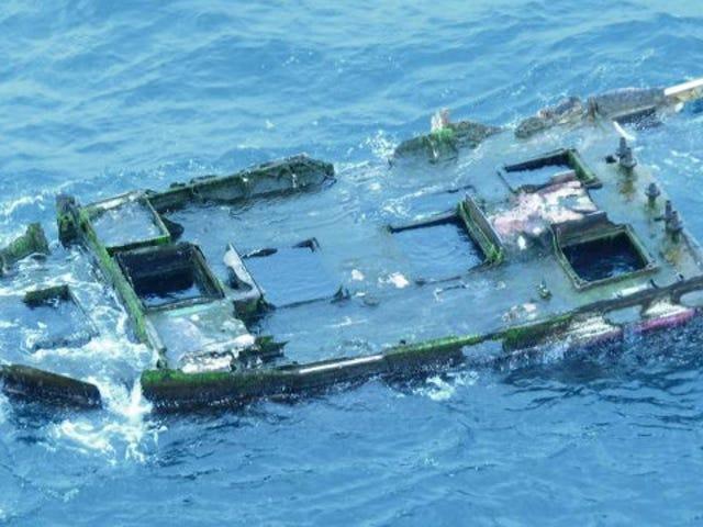 Kala Japanista Löytyi elävältä hyökkäävässä tsunami-hylyssä