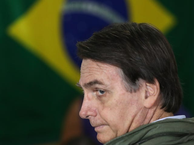 The Amazon Rainforest Faces 'Genocide' Under Brazil's New Far-Right President