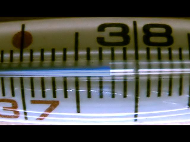 Самый маленький в мире термометр изготовлен из ДНК