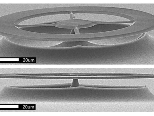 Este nuevo sensorde ultrasonidos es tan preciso que puede escuchar el sonido que hace una bacteria