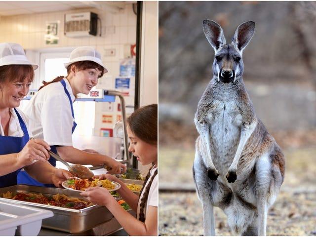 "Nebraska school district apologizes for serving students ""exotic""kangaroo-meat chili"