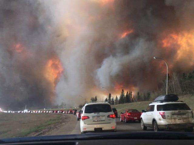 Verspreiden van bosbranden Spawn Hell on Earth Scenario