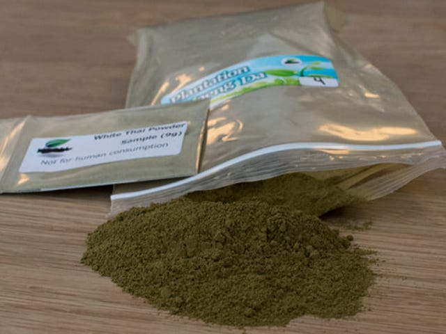 DEA Backpedals: Kratom Will Remain Legal, For Now