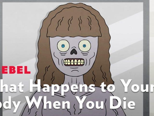 นี่คือสิ่งที่เกิดขึ้นกับร่างกายของคุณเมื่อคุณตาย