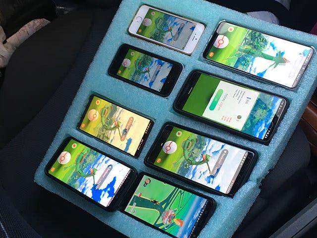 Politiet finder en mand, der spiller Pokemon Go på otte telefoner i hans bil