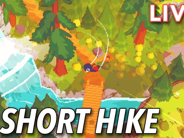 Hôm nay tôi đang tiếp tục những rung cảm êm dịu trên kênh Twitch của chúng tôi và kiểm tra A Hike ngắn trên PC