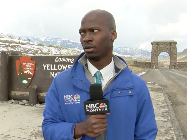 I Can Relate to This Black Reporter Getting the Fuck Away From a Herd of Bison