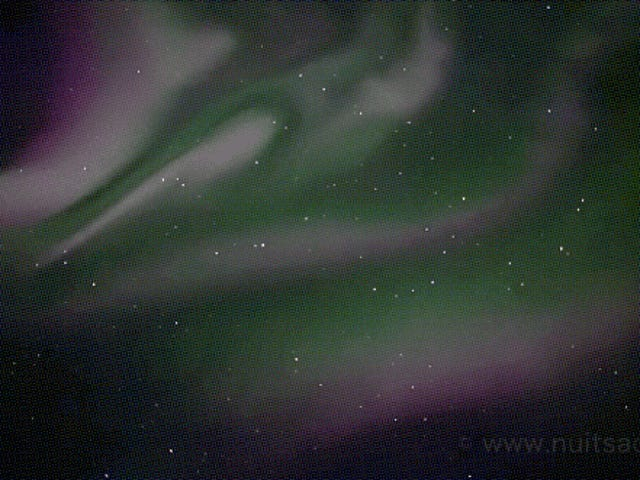 A Rare Glimpse Of Rapidly Pulsating Aurorae Over Iceland