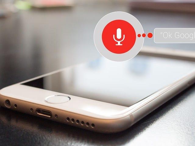 Как удалить голосовые записи из Alexa, Google Assistant, Facebook Portal и Siri
