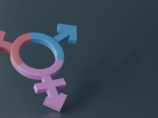 Ikke kun får ansigtsgenkendelsessoftware ofte race-ID forkert, en ny undersøgelse finder ud af, at det er misgenders trans- og ikke-binære mennesker næsten hele tiden