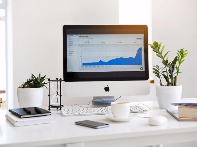 Should You Pursue a Career in Digital Marketing?
