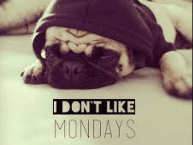 Happy...Wednesday?
