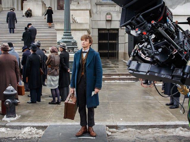 J.K. Rowling Has Already Written the Second Fantastic Beasts Film