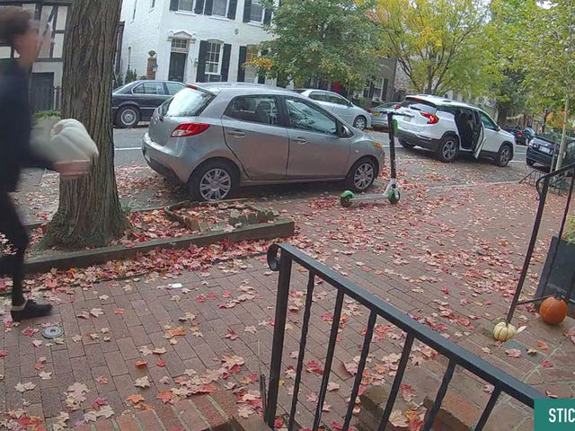 Check Out The Wheels On This Pumpkin Thief